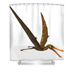 Anhanguera Pterosaur Shower Curtain by Corey Ford