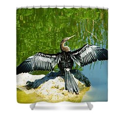 Anhinga Sunning Shower Curtain