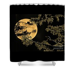 Anhingas In Full Moon Shower Curtain by Bonnie Barry