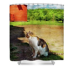 Animal - Cat - The Mouser Shower Curtain by Mike Savad