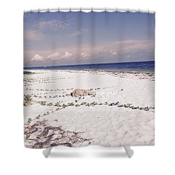 Anna Maria Island Beyond The White Sand Shower Curtain