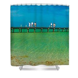 Anna Maria Island Historic City Pier Panorama Shower Curtain