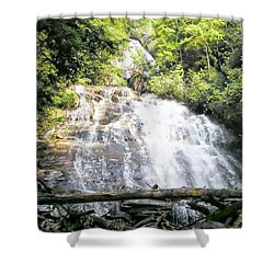 Anna Ruby Falls Shower Curtain