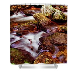 Anna Ruby Falls - Smith Creek 006 Shower Curtain