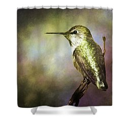Anna's Hummingbird 2 Shower Curtain