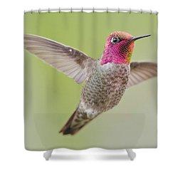 Pinkie In Flight Shower Curtain