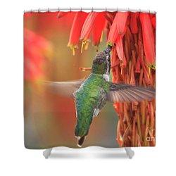 Annas Garden Shower Curtain