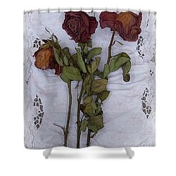 Anniversary Roses Shower Curtain