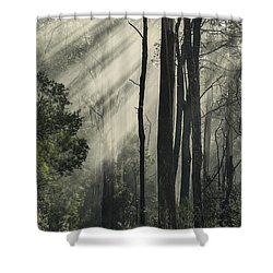 Anothen Shower Curtain by Andrew Paranavitana
