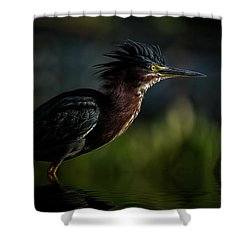 Another Bad Hair Day Shower Curtain