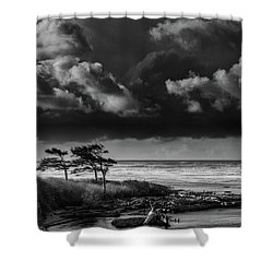 Shower Curtain featuring the photograph Another Day At Kalaloch Beach by Dan Mihai