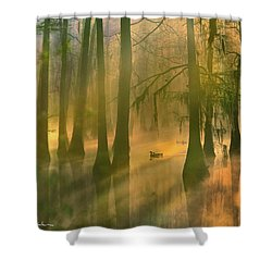 Another Day Shower Curtain by Tim Fitzharris