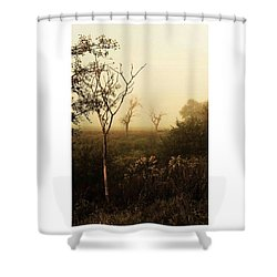 Another Morning  #autumn #morning Shower Curtain by Mandy Tabatt