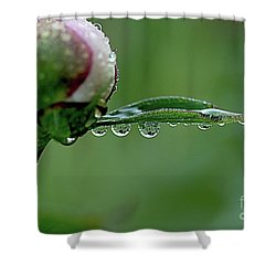 Another Rainy Day Shower Curtain
