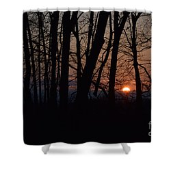Another Sunrise In The Woods Shower Curtain