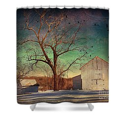 Another Winter Day  Shower Curtain