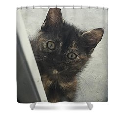 Answer The Door Shower Curtain