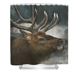 Answering The Challenge Shower Curtain
