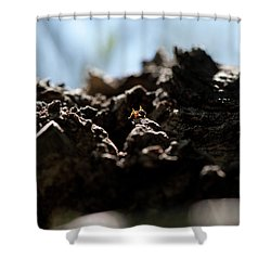 Ant Shower Curtain