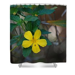 Shower Curtain featuring the photograph Ant Flowers by Rob Hans