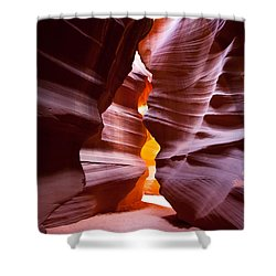 Antelope 6 Shower Curtain