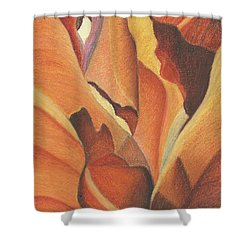 Antelope Canyon 4 - For Gloria Shower Curtain