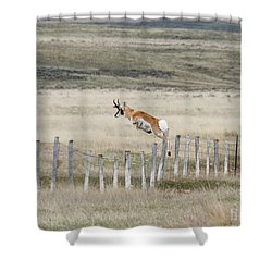 Shower Curtain featuring the photograph Antelope Jumping Fence 2 by Rebecca Margraf
