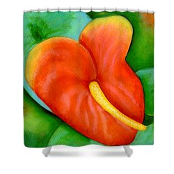Anthurium Flowers #228 Shower Curtain by Donald k Hall