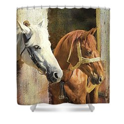 Shower Curtain featuring the digital art Anticipation by Colleen Taylor