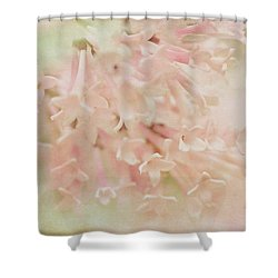 Shower Curtain featuring the photograph Anticipation  by Connie Handscomb