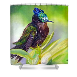 Antillean Crested Hummingbird Shower Curtain by LaVonne Hand