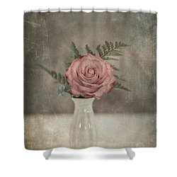 Antiquated Romance Shower Curtain