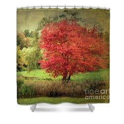 Antique Autumn Shower Curtain