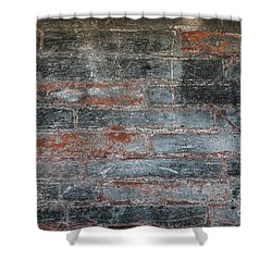 Shower Curtain featuring the photograph Antique Brick Wall by Elena Elisseeva
