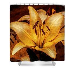 Antique Lilies Shower Curtain