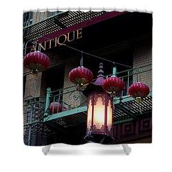 Antique Peking Shower Curtain