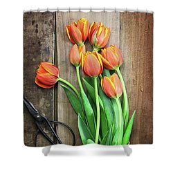 Shower Curtain featuring the photograph Antique Scissors And Bouguet Of Tulips by Stephanie Frey