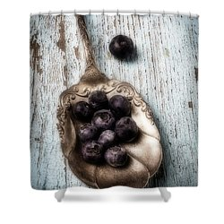 Antique Spoon And Buleberries Shower Curtain by Garry Gay