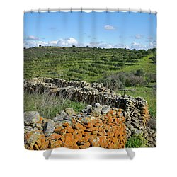 Antique Stone Wall Of An Old Farm Shower Curtain by Angelo DeVal