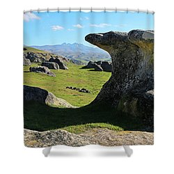 Anvil Rock Shower Curtain