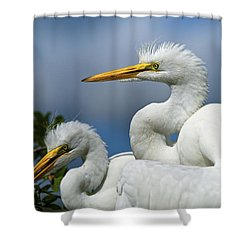 Anxiously Waiting Shower Curtain