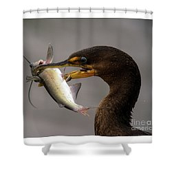 Anyone For Catfish? Shower Curtain