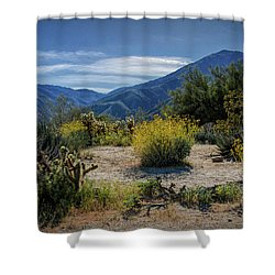 Shower Curtain featuring the photograph Anza-borrego Desert State Park Desert Flowers by Randall Nyhof