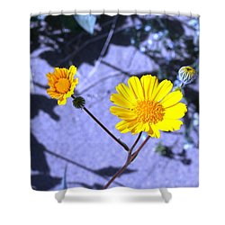 Anza Flower Shower Curtain