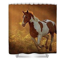 Apache - Three Bars Ranch Shower Curtain