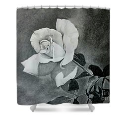 Aperitif Rose Shower Curtain