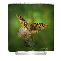 Shower Curtain featuring the photograph Aphrodite Fritillary Butterfly by Sandy Keeton