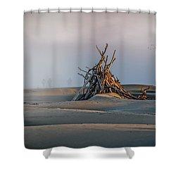 Apocalypse Walkers Shower Curtain