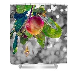 Apple And The Diamond Shower Curtain