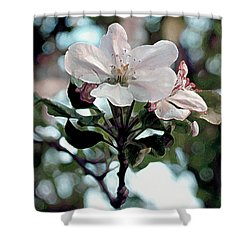 Apple Blossom Time Shower Curtain by RC deWinter